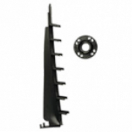 11570   SCARITA RUCANOR